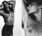 Crazy-and-amazing-Parrot-singing-Gangnam-style