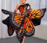 butterfly-3-600x891