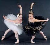 swan-ballet-beautiful-black-and-white-Favim.com-6896971208443832013-06-13-09-11[www.urlag.mn]