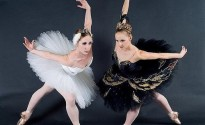 swan-ballet-beautiful-black-and-white-Favim.com-6896971208443832013-06-13-09-11[www.urlag.mn]