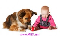 dogs-make-babies-healthy-2