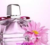 magia-perfum-755d28494c452028a60329a6e5c0c252_a4a5a3
